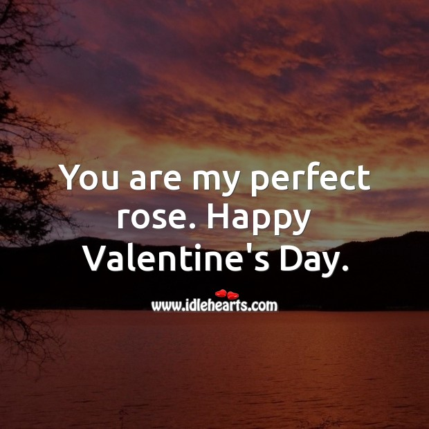 Image, You are my perfect rose. Happy Valentine's Day.