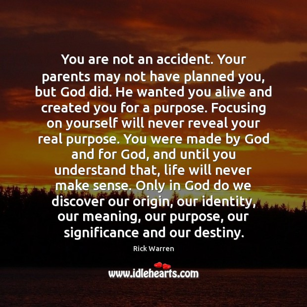 You are not an accident. Your parents may not have planned you, Image