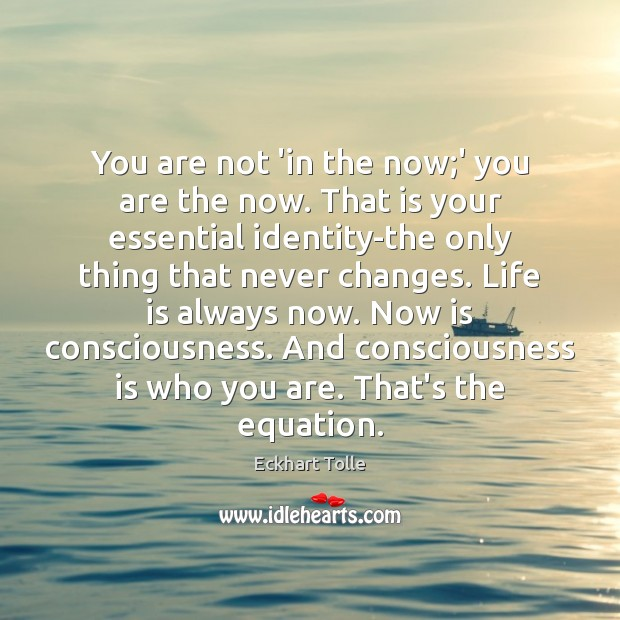 You are not 'in the now;' you are the now. That Eckhart Tolle Picture Quote