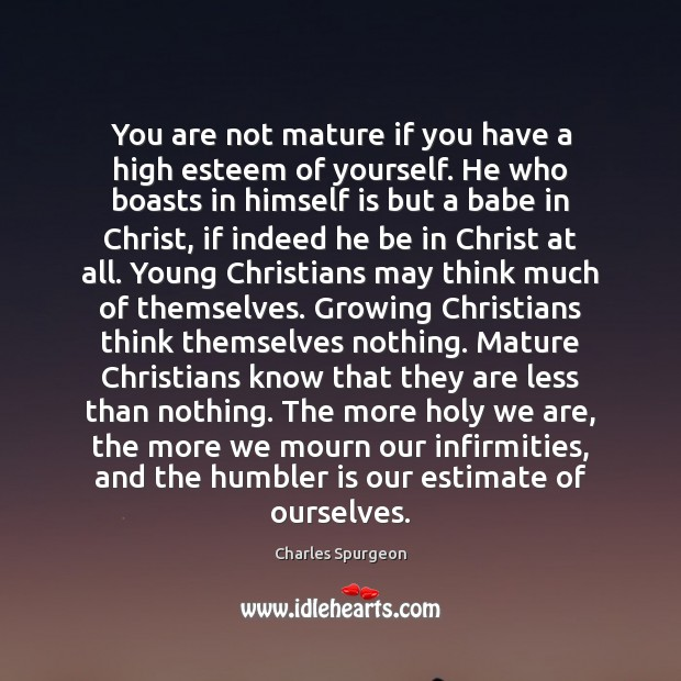 You are not mature if you have a high esteem of yourself. Image