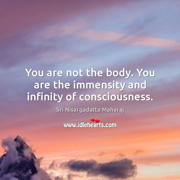 You are not the body. You are the immensity and infinity of consciousness. Sri Nisargadatta Maharaj Picture Quote