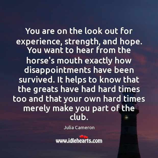 You are on the look out for experience, strength, and hope. You Julia Cameron Picture Quote