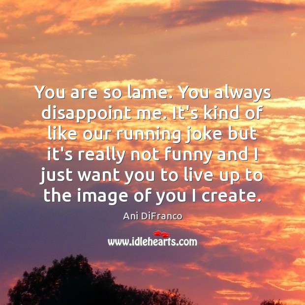 You are so lame. You always disappoint me. It's kind of like Ani DiFranco Picture Quote
