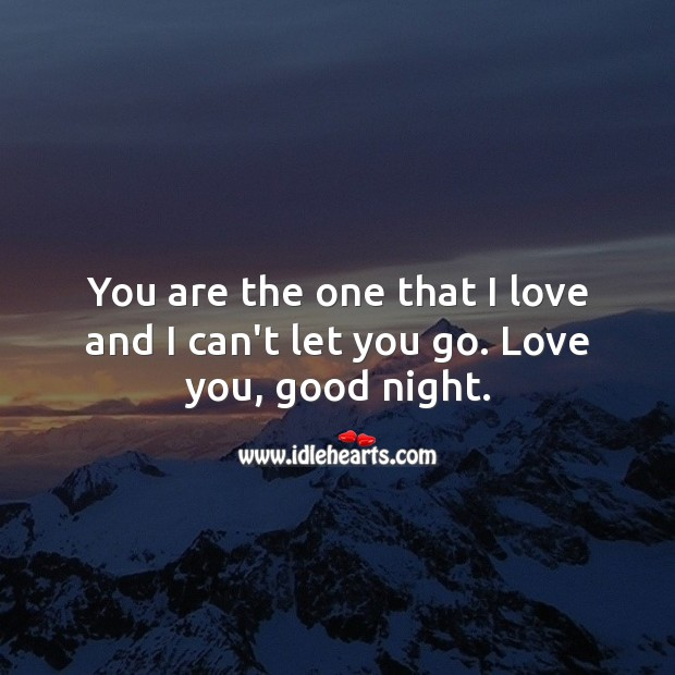 You are the one that I love and I can't let you go. Love you, good night. Good Night Quotes Image