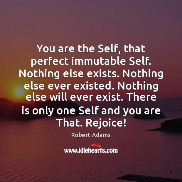 You are the Self, that perfect immutable Self. Nothing else exists. Nothing Robert Adams Picture Quote