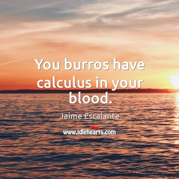 You burros have calculus in your blood. Image