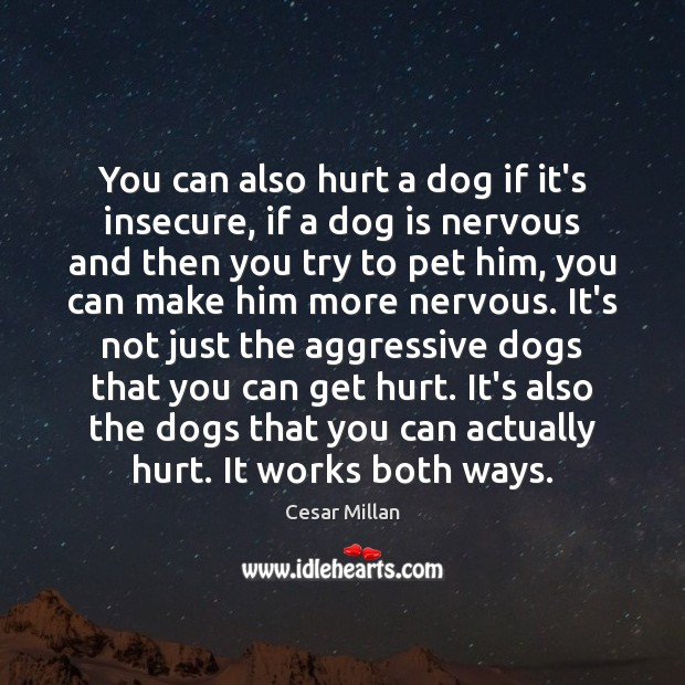 Image, You can also hurt a dog if it's insecure, if a dog