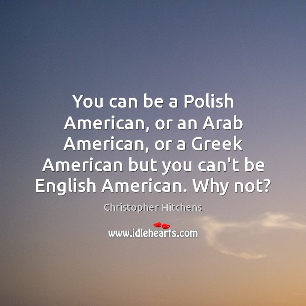 You can be a Polish American, or an Arab American, or a Image