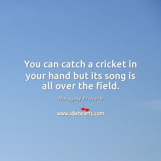 You can catch a cricket in your hand but its song is all over the field. Malagasy Proverbs Image
