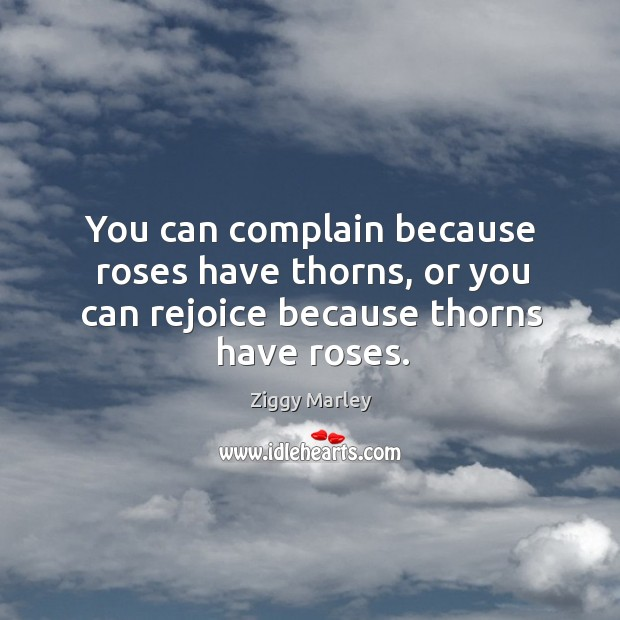 You can complain because roses have thorns, or you can rejoice because thorns have roses. Image