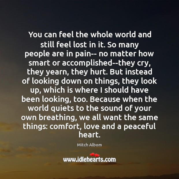 You can feel the whole world and still feel lost in it. Mitch Albom Picture Quote