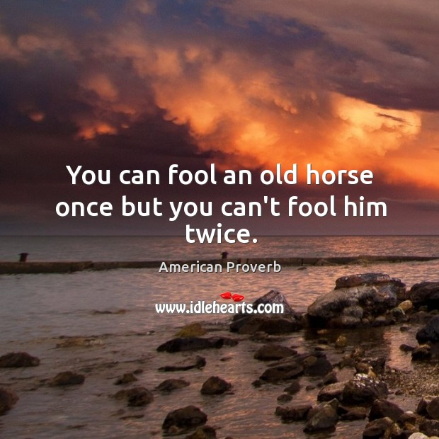 Image, You can fool an old horse once but you can't fool him twice.