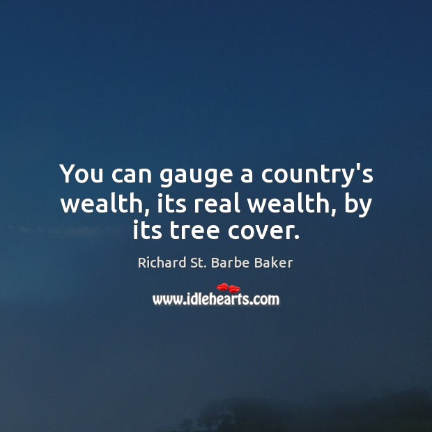 You can gauge a country's wealth, its real wealth, by its tree cover. Image