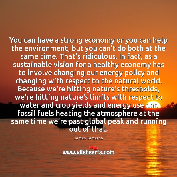 You can have a strong economy or you can help the environment, Image