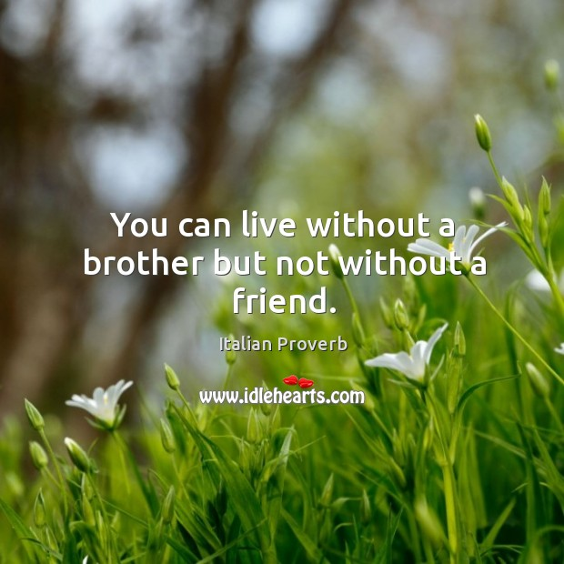 Image, You can live without a brother but not without a friend.
