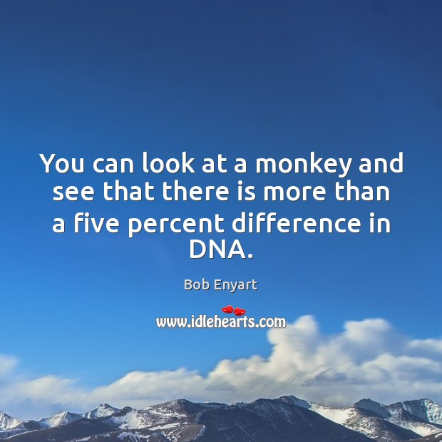 Image, You can look at a monkey and see that there is more than a five percent difference in DNA.