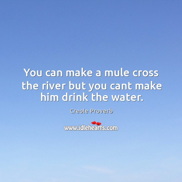 You can make a mule cross the river but you cant make him drink the water. Creole Proverbs Image