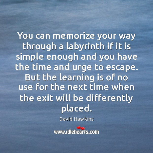 You can memorize your way through a labyrinth if it is simple Learning Quotes Image