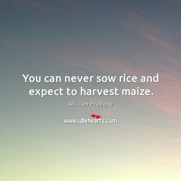 Image, You can never sow rice and expect to harvest maize.