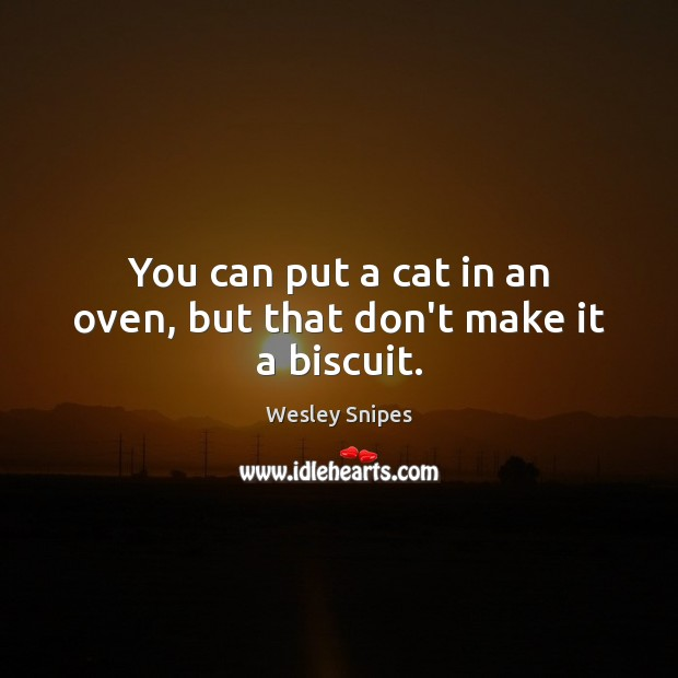 You can put a cat in an oven, but that don't make it a biscuit. Wesley Snipes Picture Quote