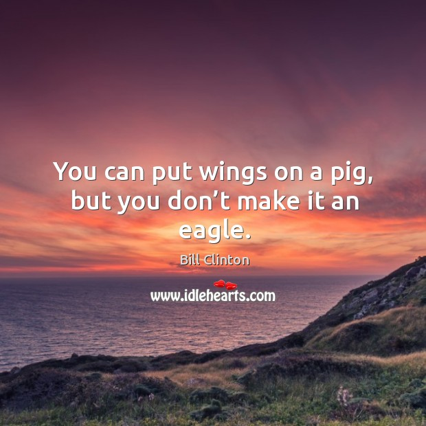 You can put wings on a pig, but you don't make it an eagle. Image