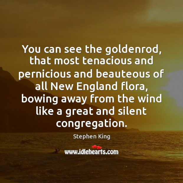 Image, You can see the goldenrod, that most tenacious and pernicious and beauteous