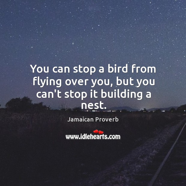 You can stop a bird from flying over you, but you can't stop it building a nest. Jamaican Proverbs Image