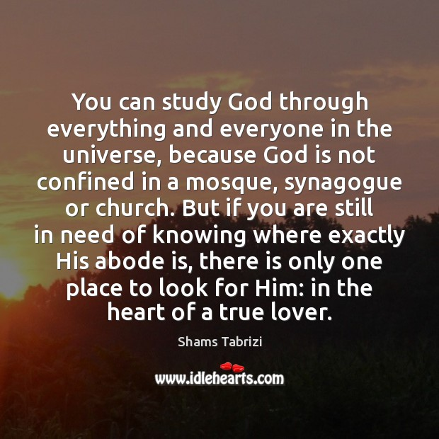 You can study God through everything and everyone in the universe, because Image