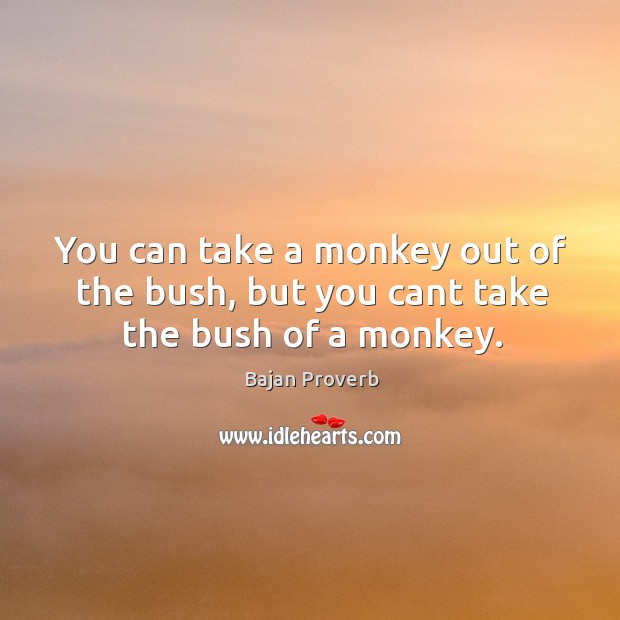 You can take a monkey out of the bush, but you cant take the bush of a monkey. Bajan Proverbs Image