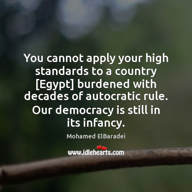 You cannot apply your high standards to a country [Egypt] burdened with Image