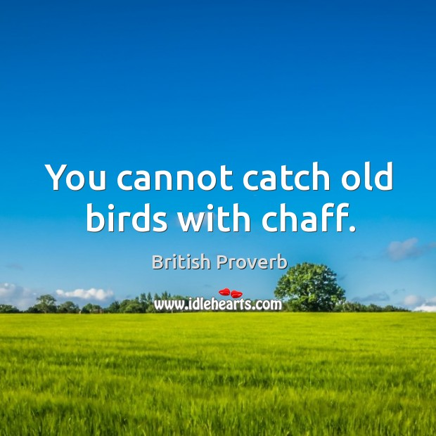 You cannot catch old birds with chaff. Image