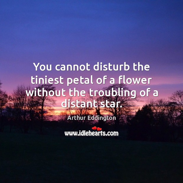 You cannot disturb the tiniest petal of a flower without the troubling of a distant star. Arthur Eddington Picture Quote
