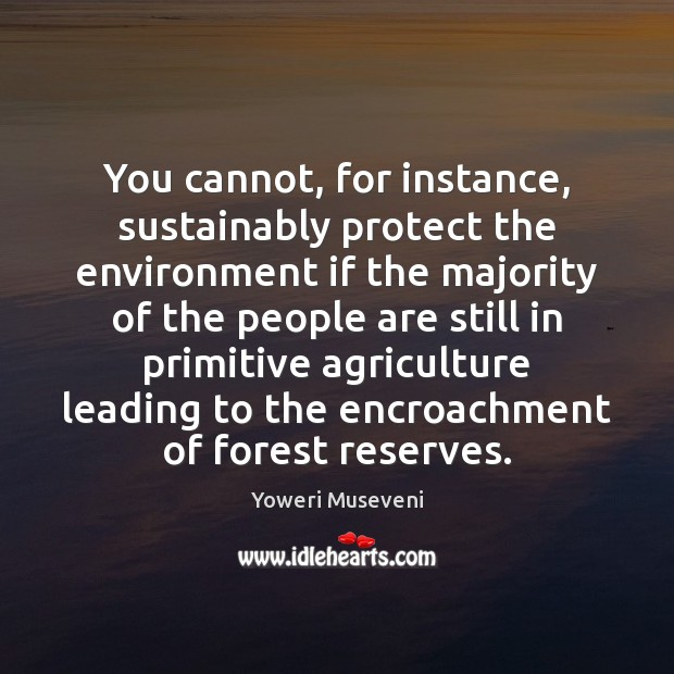 You cannot, for instance, sustainably protect the environment if the majority of Image