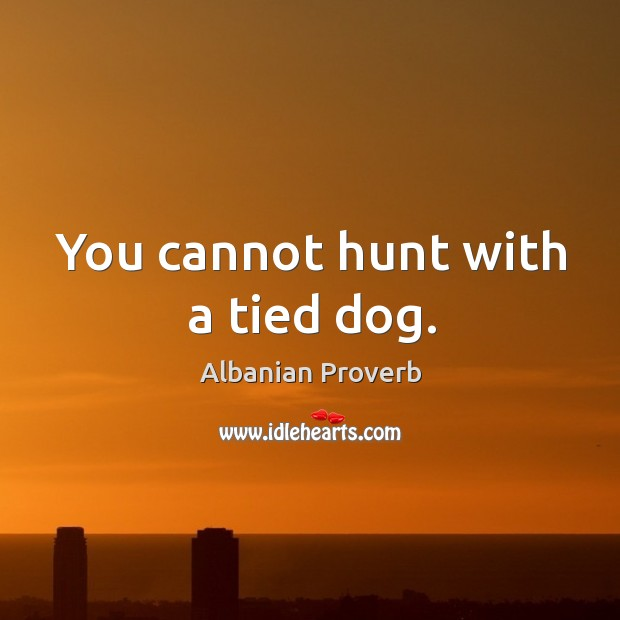 You cannot hunt with a tied dog. Albanian Proverbs Image