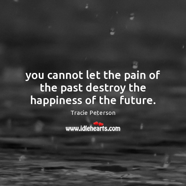 You cannot let the pain of the past destroy the happiness of the future. Tracie Peterson Picture Quote