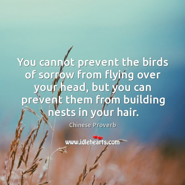 Image, You cannot prevent the birds of sorrow from flying over your head.