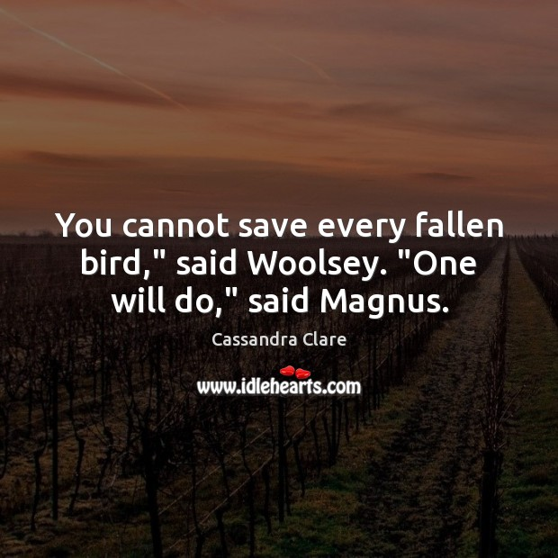 "You cannot save every fallen bird,"" said Woolsey. ""One will do,"" said Magnus. Image"