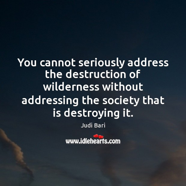 You cannot seriously address the destruction of wilderness without addressing the society Image