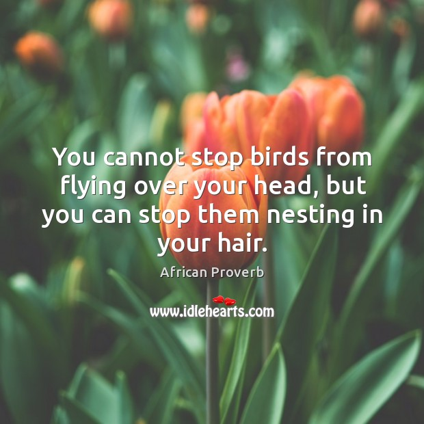 Image, You cannot stop birds from flying over your head, but you can stop them nesting in your hair.