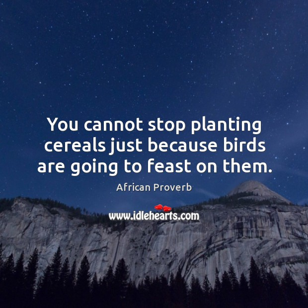 Image, You cannot stop planting cereals just because birds are going to feast on them.