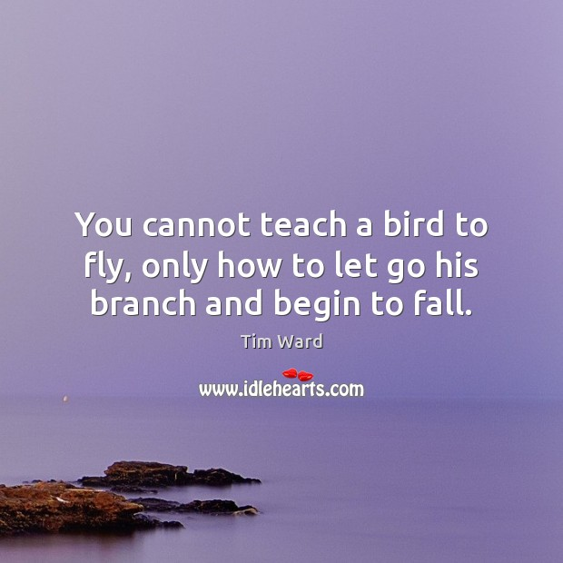 You cannot teach a bird to fly, only how to let go his branch and begin to fall. Image