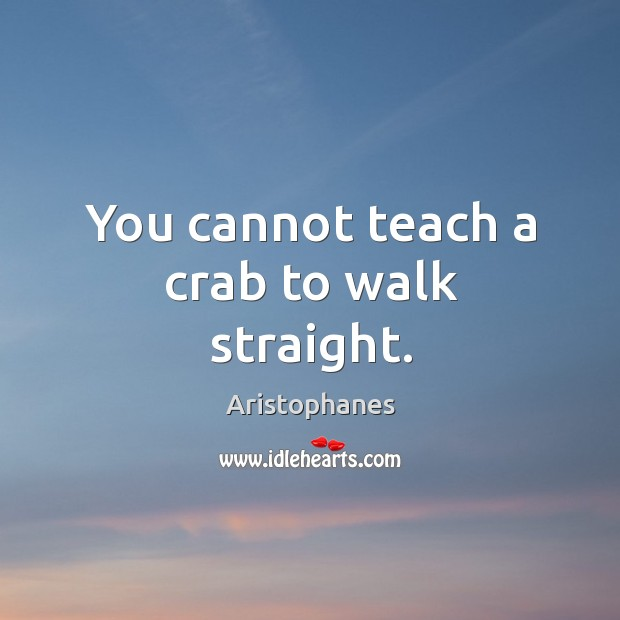 Image, You cannot teach a crab to walk straight.