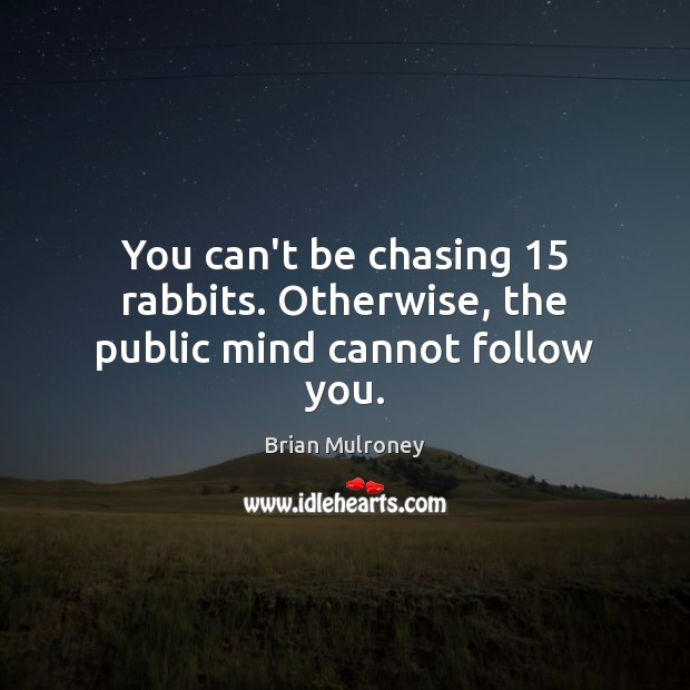 Image, You can't be chasing 15 rabbits. Otherwise, the public mind cannot follow you.