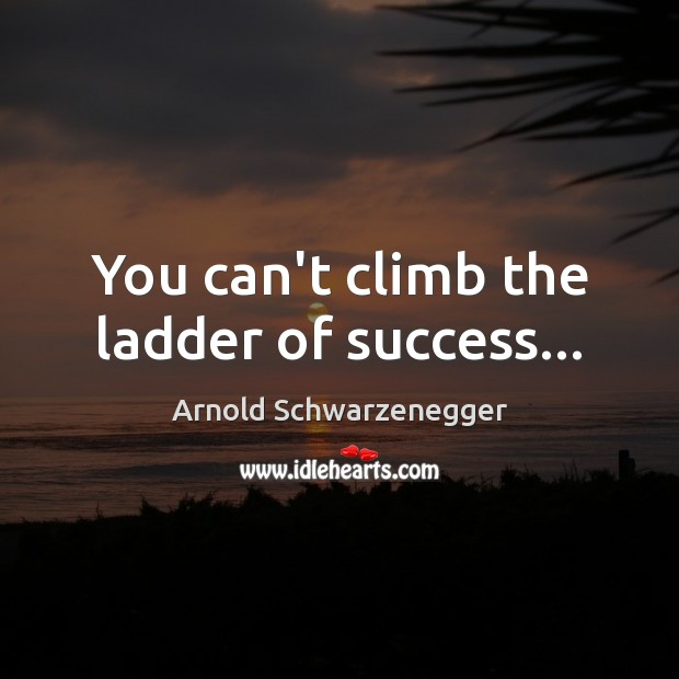 You can't climb the ladder of success… Arnold Schwarzenegger Picture Quote