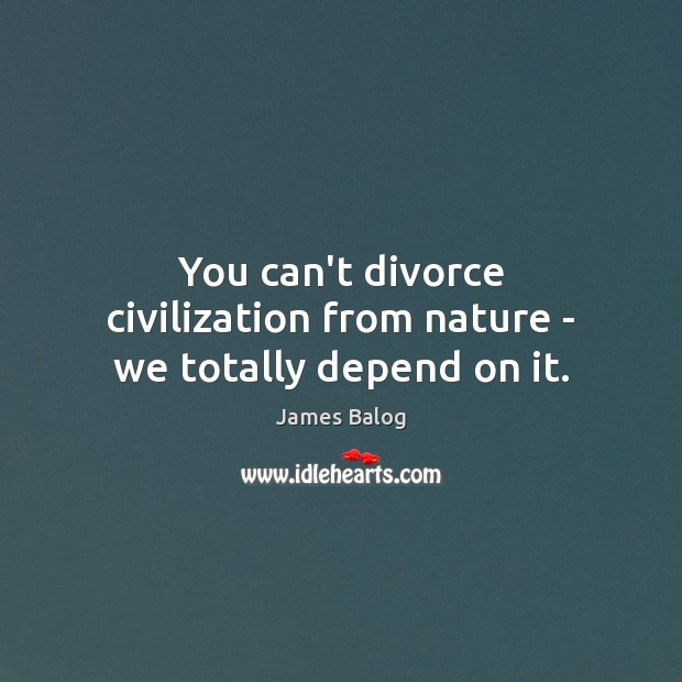 You can't divorce civilization from nature – we totally depend on it. Image
