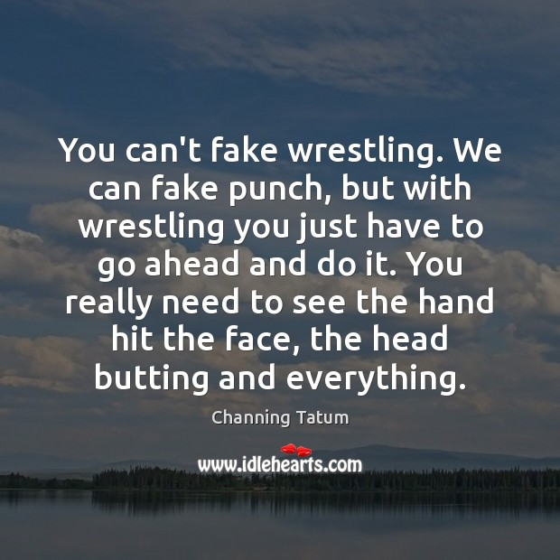 Image, You can't fake wrestling. We can fake punch, but with wrestling you