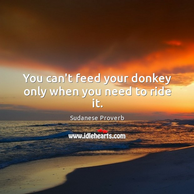 You can't feed your donkey only when you need to ride it. Sudanese Proverbs Image