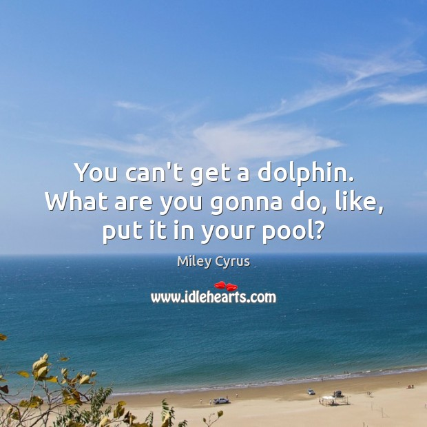 Image, You can't get a dolphin. What are you gonna do, like, put it in your pool?