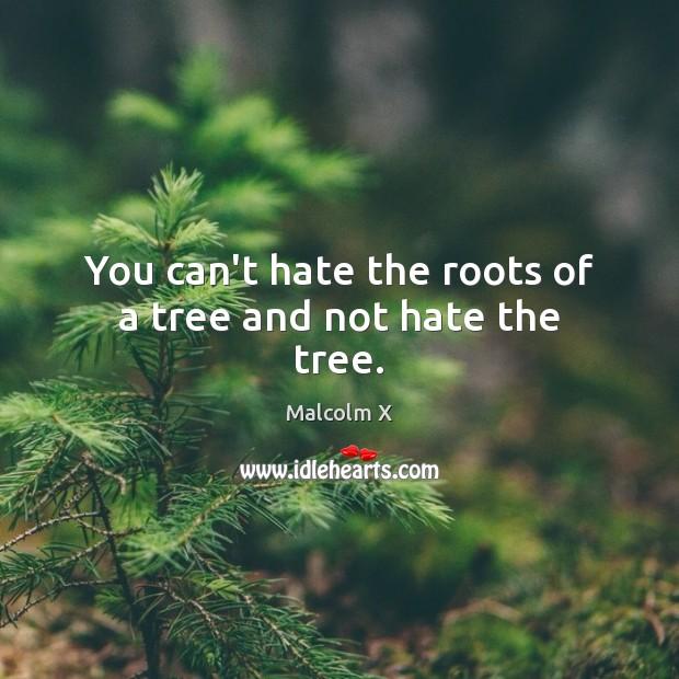 Image, You can't hate the roots of a tree and not hate the tree.