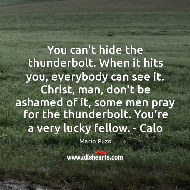 You can't hide the thunderbolt. When it hits you, everybody can see Mario Puzo Picture Quote